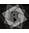 Logo in floating menu logo 29x33 dark grey